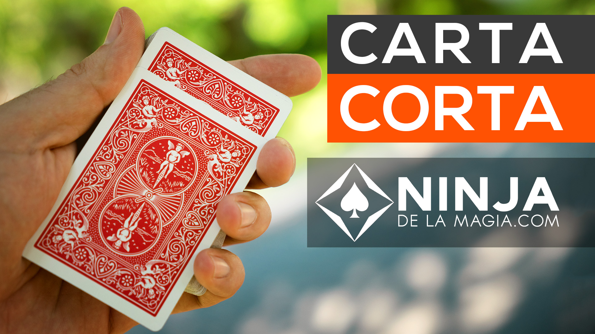 AMG 2014 - 20 - Carta Corta